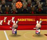 Баскетбол кроликов на двоих