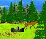 Игра охота на оленей