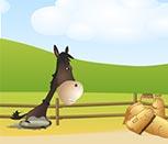 Игра про лошадей бродилки